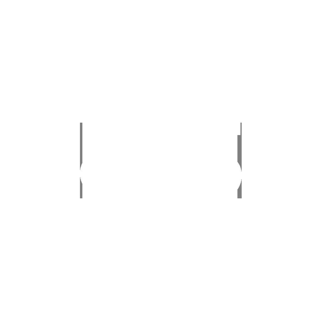 13 - Asics