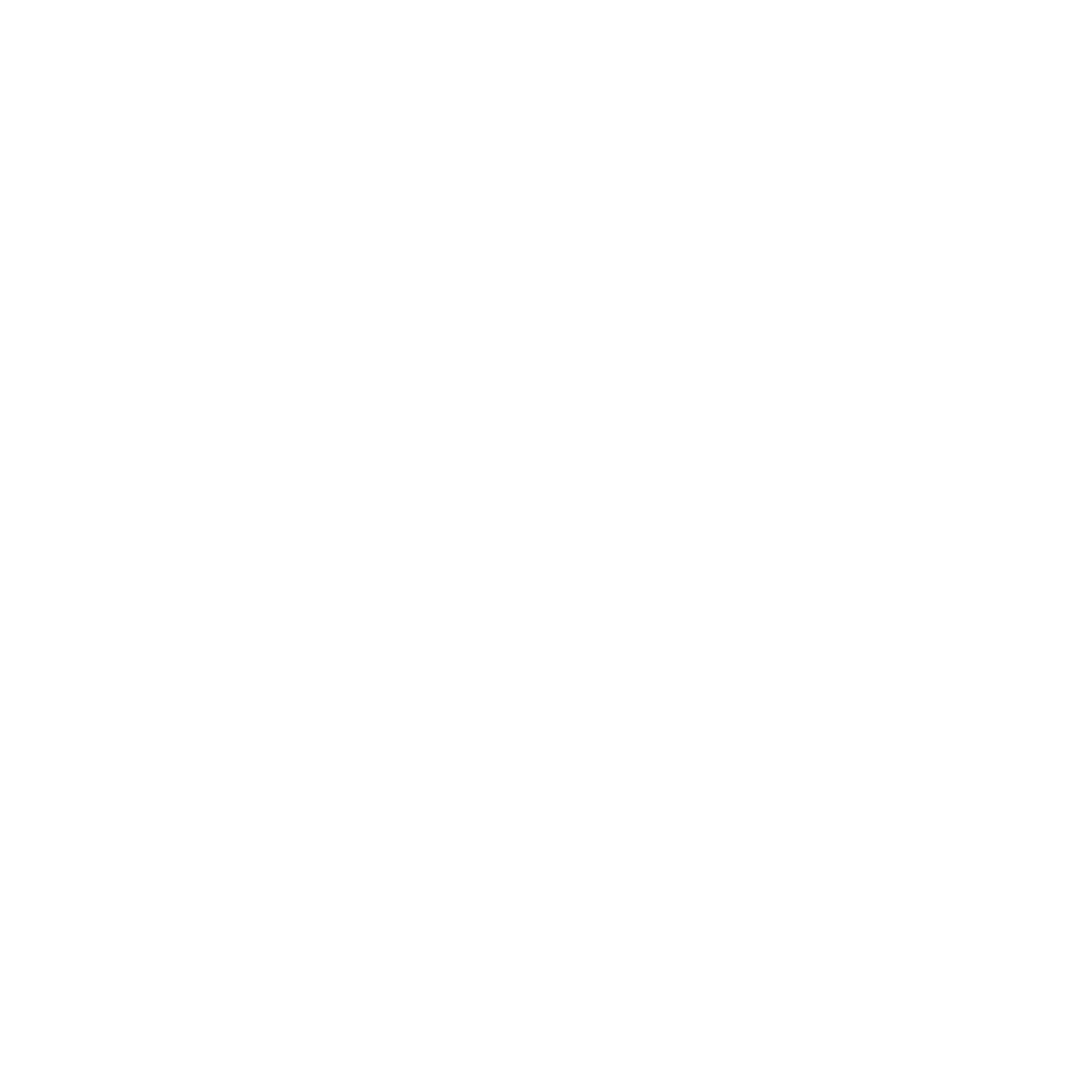 02 - Puma